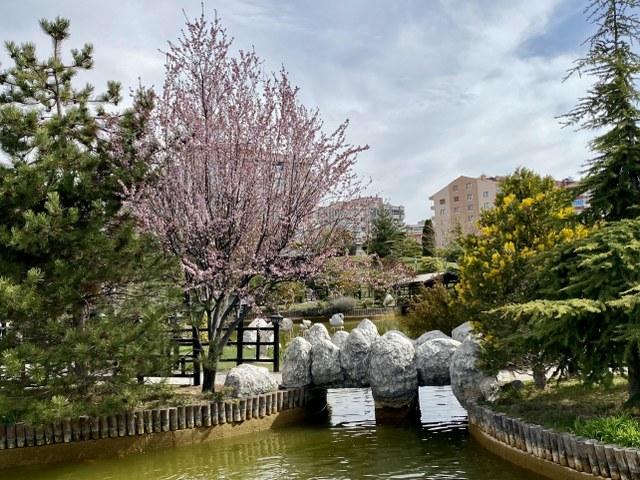 konya-kyoto-24_640x480