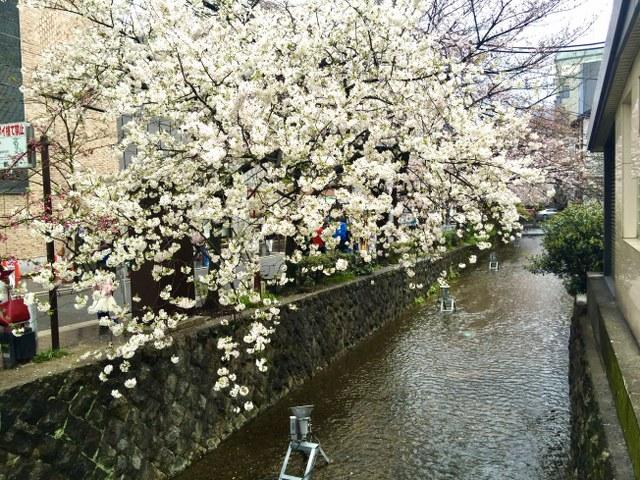 kyoto-49_640x480