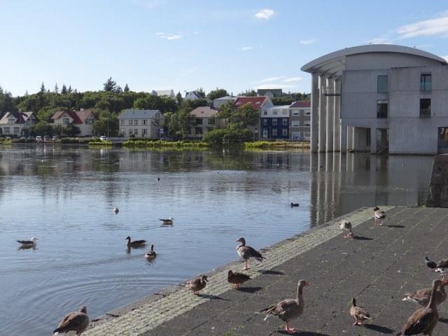 reykjavik-13_640x480